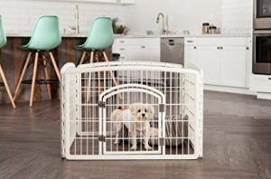 Best Dog Pen With Door