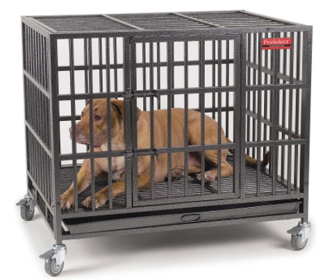 Best Wheeled Dog Crate that is Indestructible