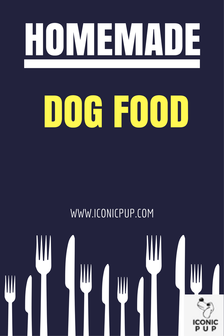 Raw Food Dog Diet