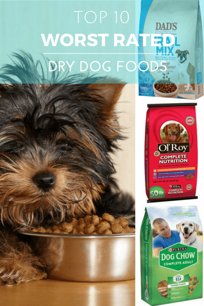 Best Dry Food For Small Dogs Australia