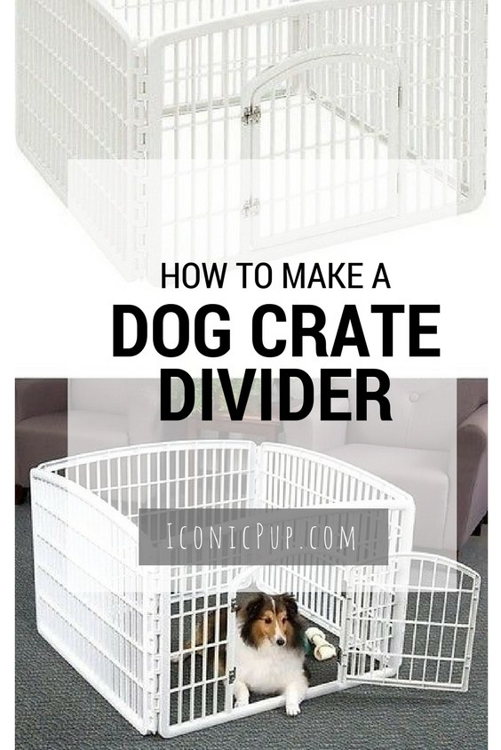 Used Dog Crates >> How to Make a Dog Crate Divider