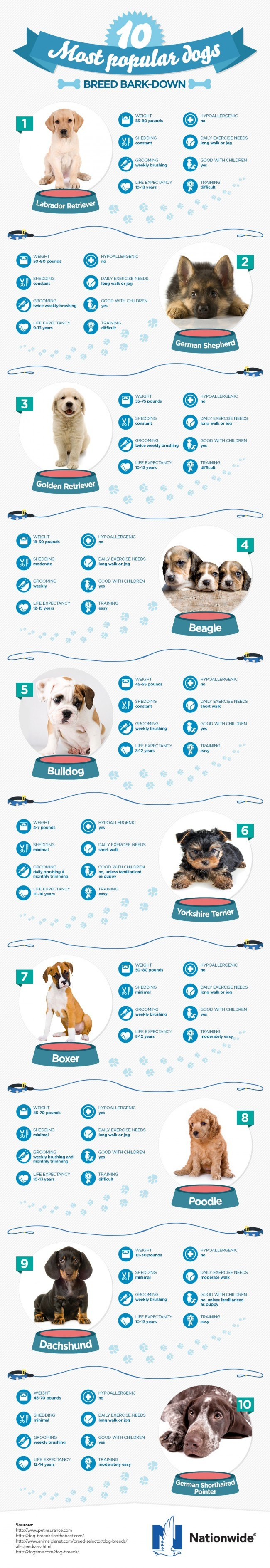 infographic for some very useful info on the most popular dog breeds