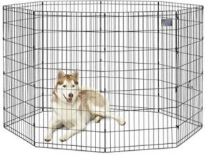 Best Pet Playpen