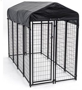 Best Outside Dog Kennel Review