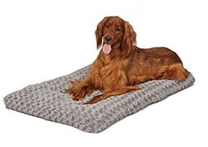 Best Quality Dog Bed