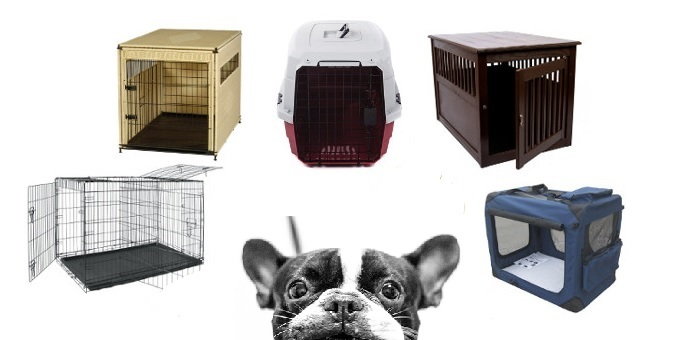 Which is the best dog crate for my pet?