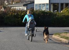 Female biking with German Shepherd and a Baby